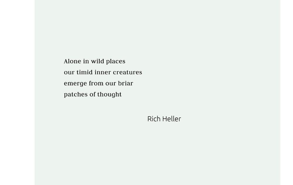 Rich Heller 1270x800 q95.jpg