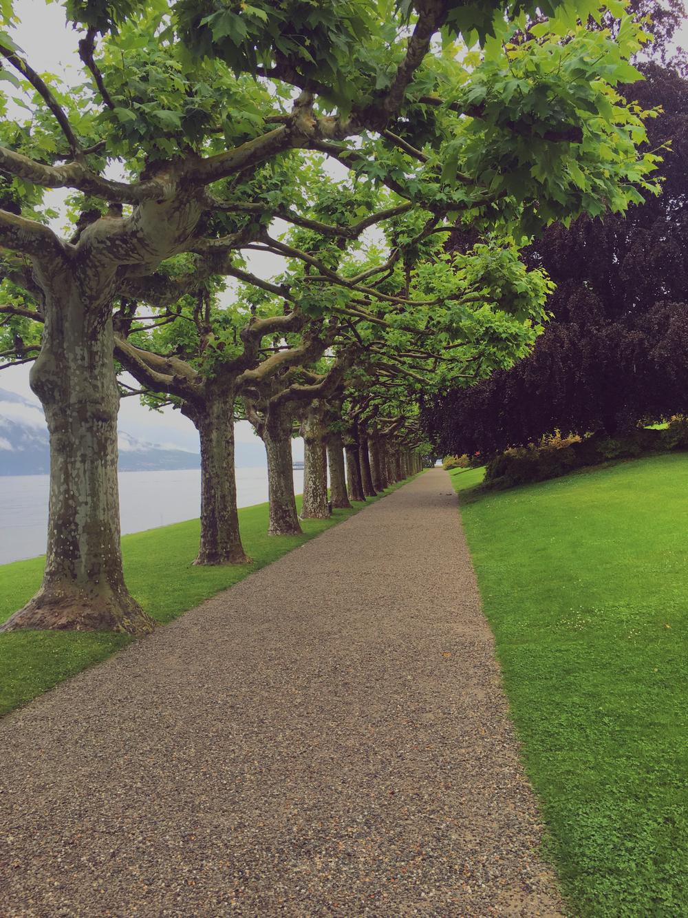 I Giardini di Villa - Bellagio