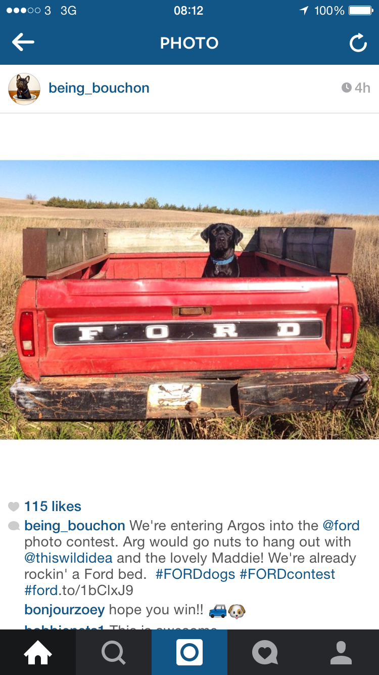 Ford dog 2