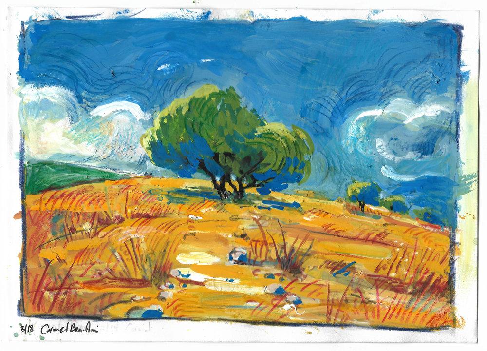 wadi 3.jpg