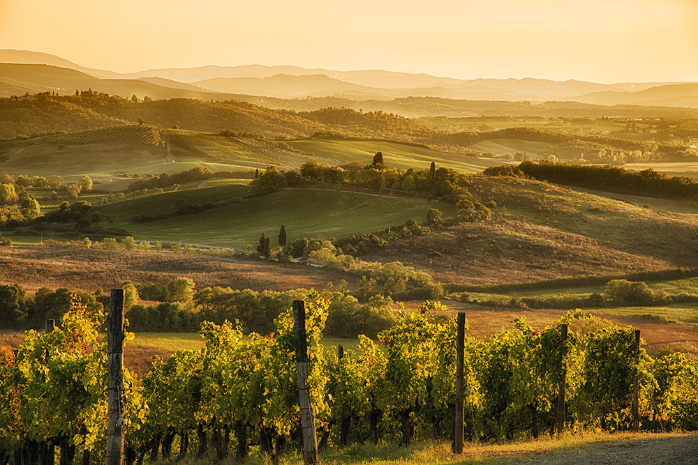 Tuscany_giallo_landscape.jpg