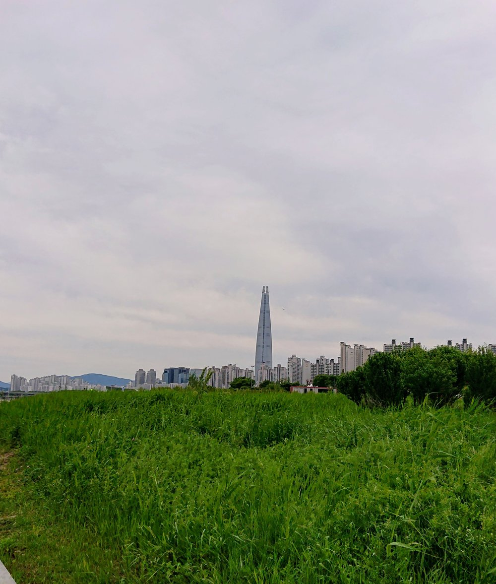 Lotte World Tower. At 123 floors and 555 meters (5 is a lucky number in Asian cultures), it is currently the tallest building in South Korea, and the 5th tallest in the world. Also looks like the Eye of Sauron.
