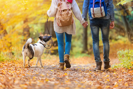 47410078_S_couple_walking_trail_dog_autumn_hiking_.jpg