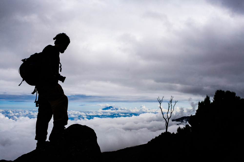 Kilimanjaro642.jpg