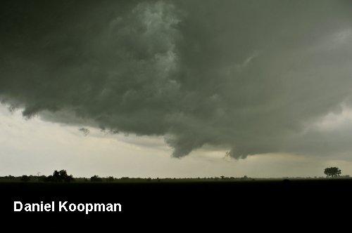 0105-Koopman1.jpg