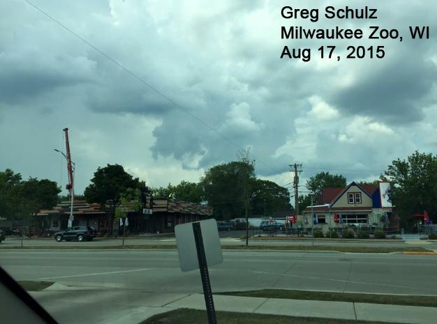 2016 08-GregSchulzMilwZoo.jpg