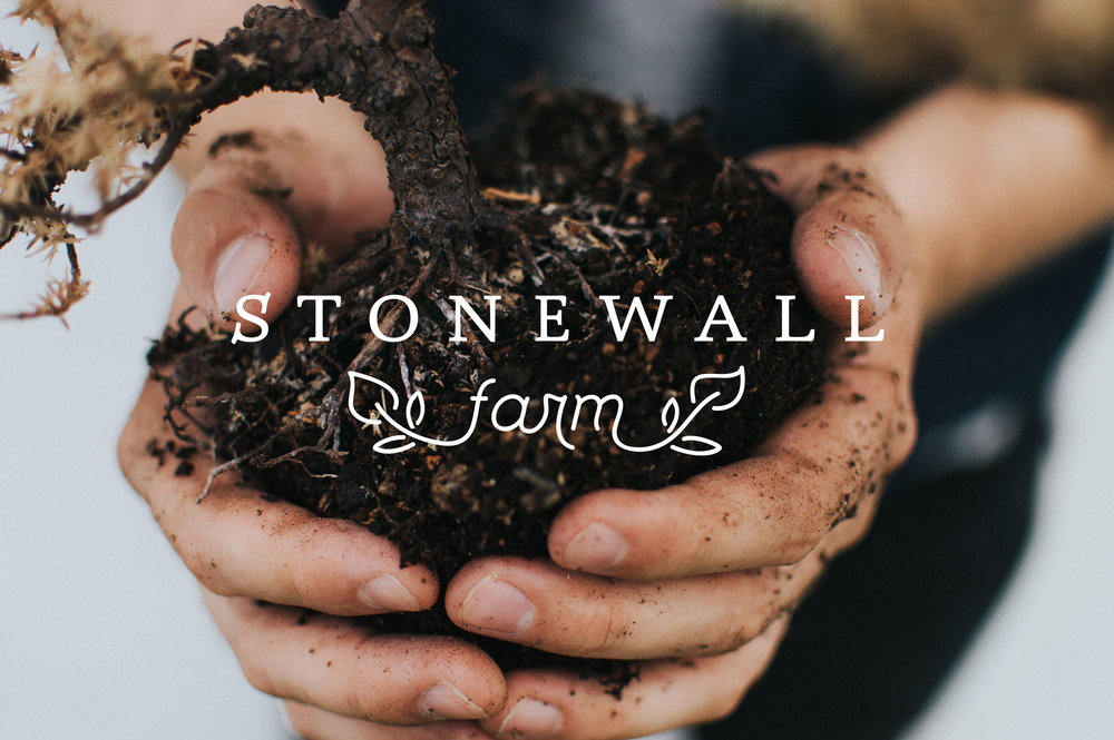 Stonewall Farm  Branding, Print & WordPress Website