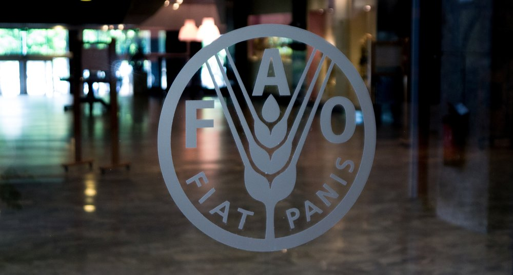 FAO_Logo_Glass