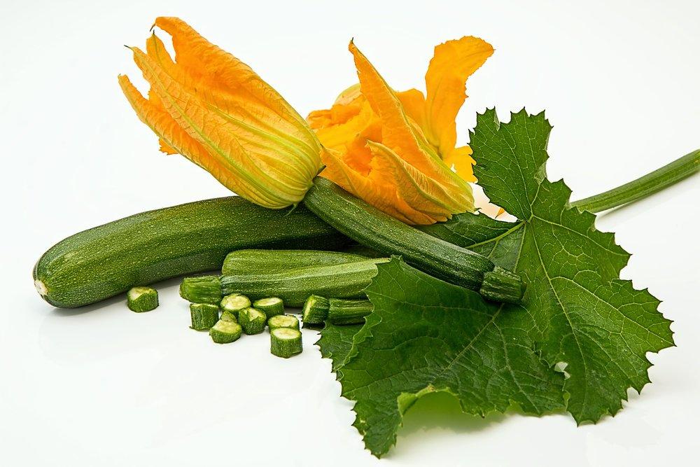 Zucchini Benefits photo3.jpg