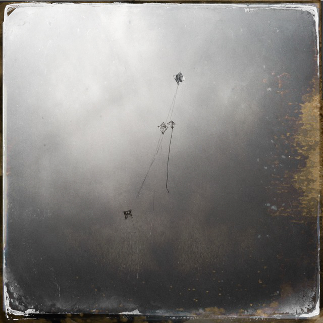 Kite Dreams #3