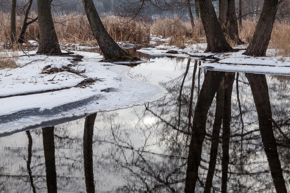 Finding Lake Wingra.jpg
