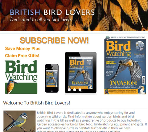 British Bird Lovers   Feature September 21st 2014