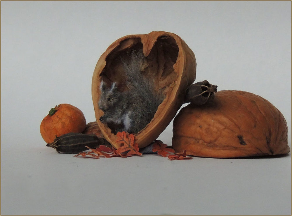 Scale: 1:12    Medium: Polymer clay/ mixed media sculpture made with synthetic and wool roving.    2017    Prices for grey squirrels start from £75.00 depending on the pose of the sculpture. Price includes postage within the UK.