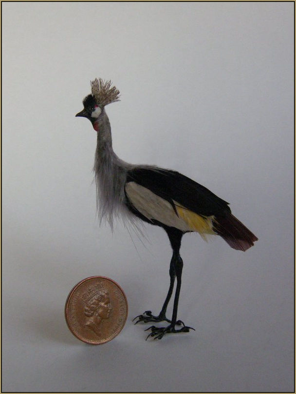 Scale: 1:12th    Medium: Polymer clay, naturally molted duck and goose feathers and synthetic plumage, wire feet and blue glass eyes.    Measurments: 8.03 cm