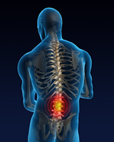 The science of low back pain