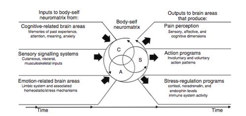 Почему в мышцах чувствуется напряжение?