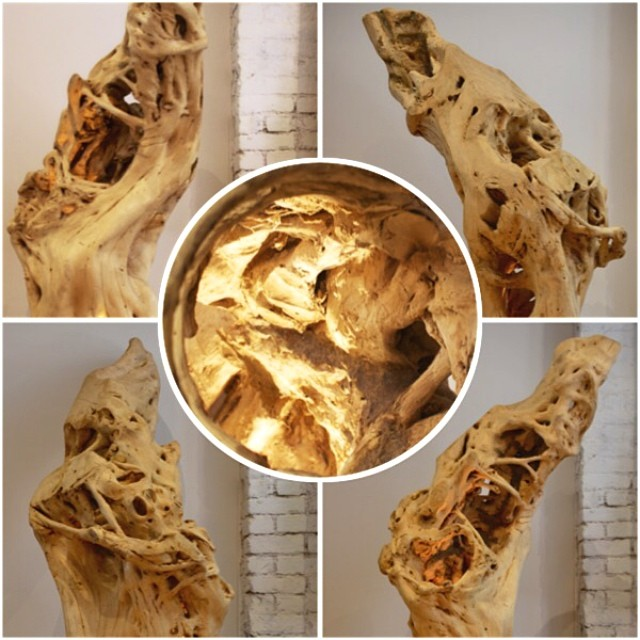 Buddy Warren's #itemoftheday, Hollowed Tree Trunk lighted up with a hidden lamp.  #conversationpiece#interiordesign#padshrink#potd#nature#design#BuddyWarrenInc#BuddyWarrenNYC