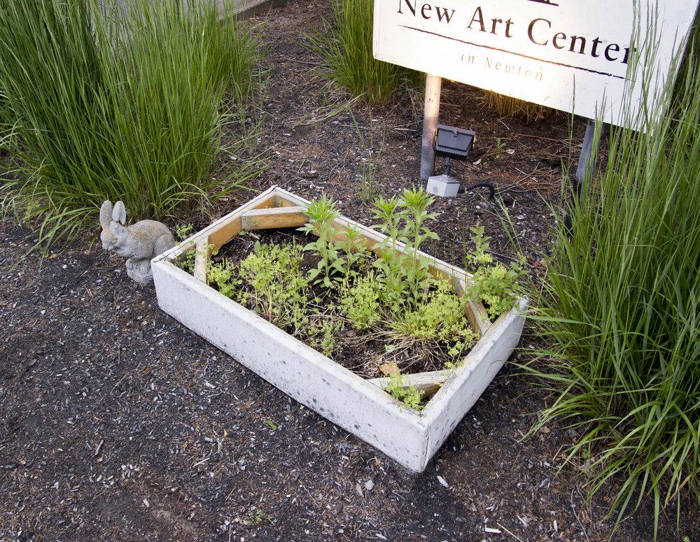 Garden  (at New Art Center) . 2015. Canvas, wood, paint, metal staples, soil, plants