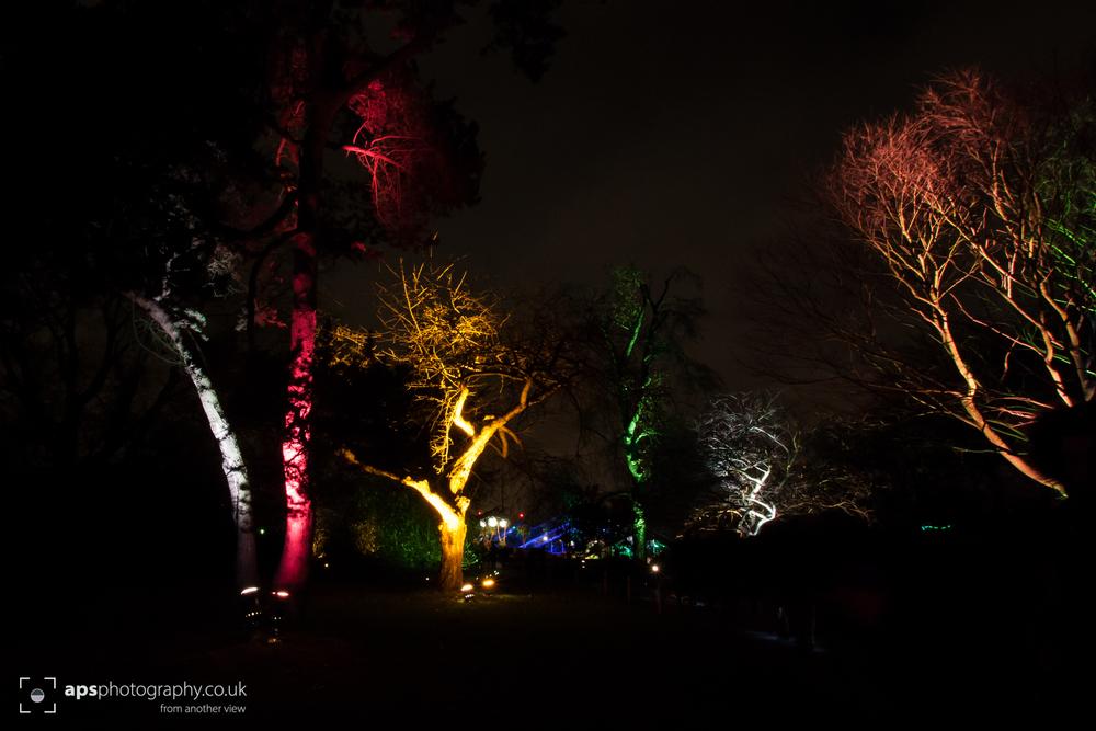 Kew 007.JPG