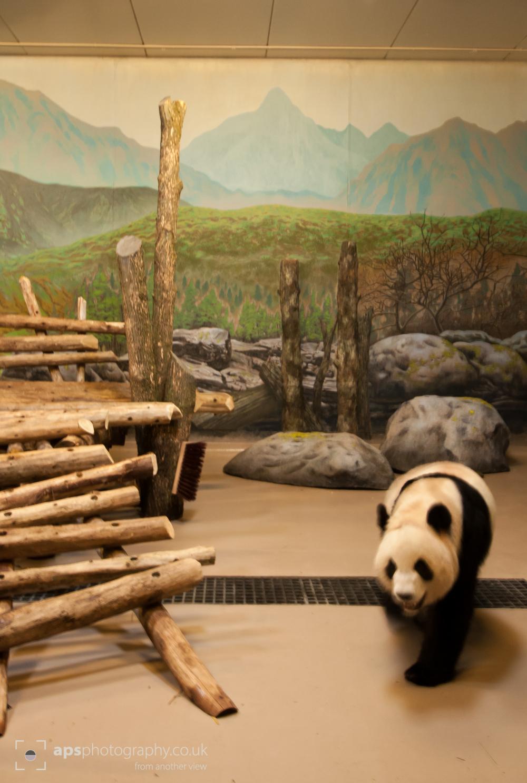 Toronto Zoo 006.jpg