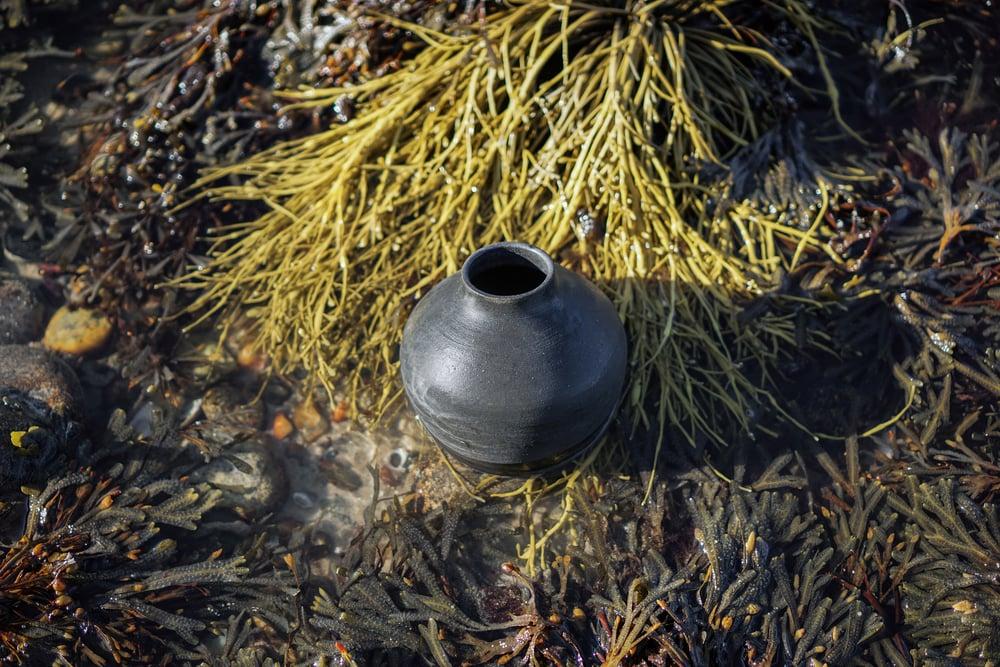LF_Pottery_December_01-16_9.jpg