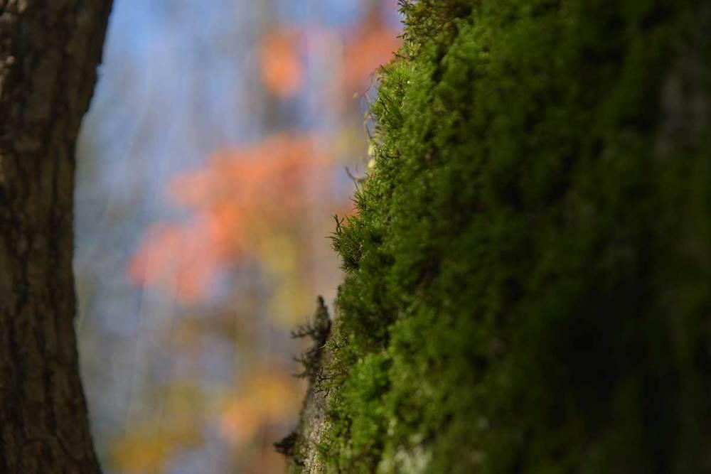 Scouting-winter-trip_0028.jpg
