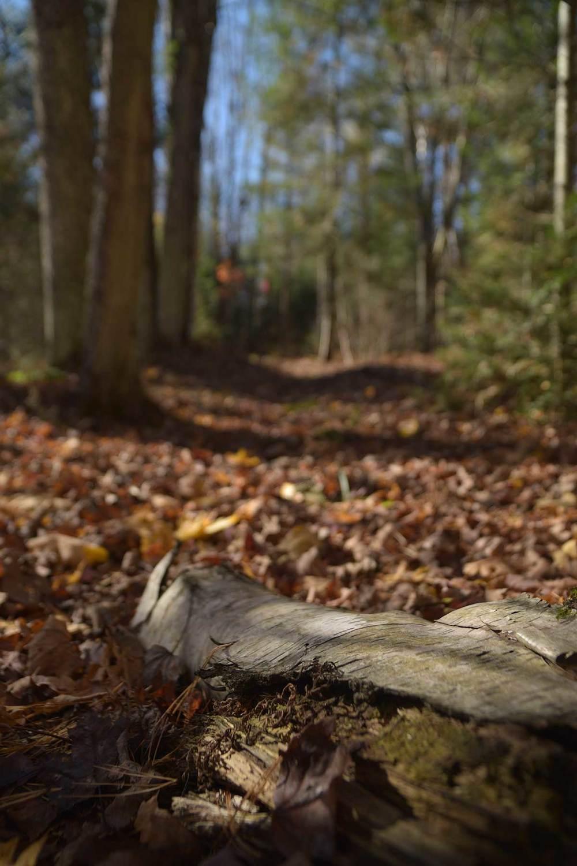 Scouting-winter-trip_0048.jpg
