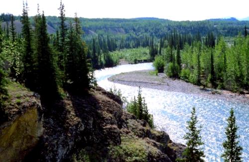 Pelly River - Yukon Territory