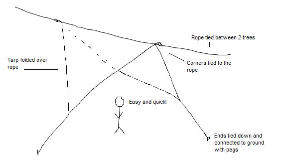 Tarp 1 - 2.png