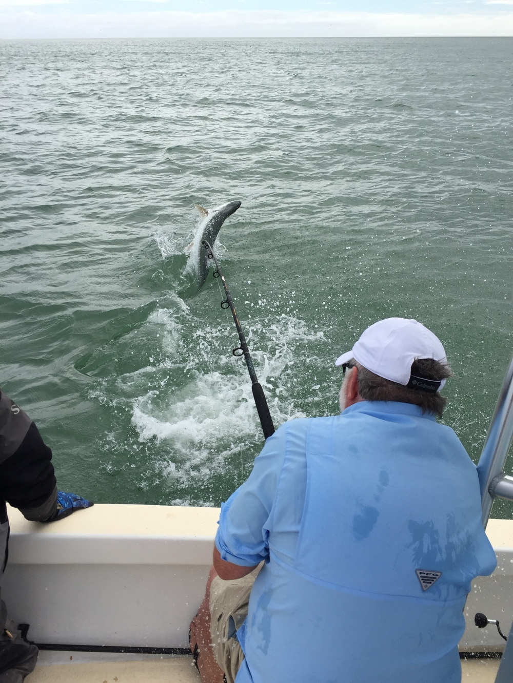 Tarpon fishing in fort myers florida fishing charters for Florida fishing trips