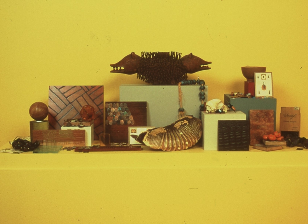 Newark Museum-ModusOperandiForImaginationAndInvention,1992-2000-AnimisticVignette.jpg