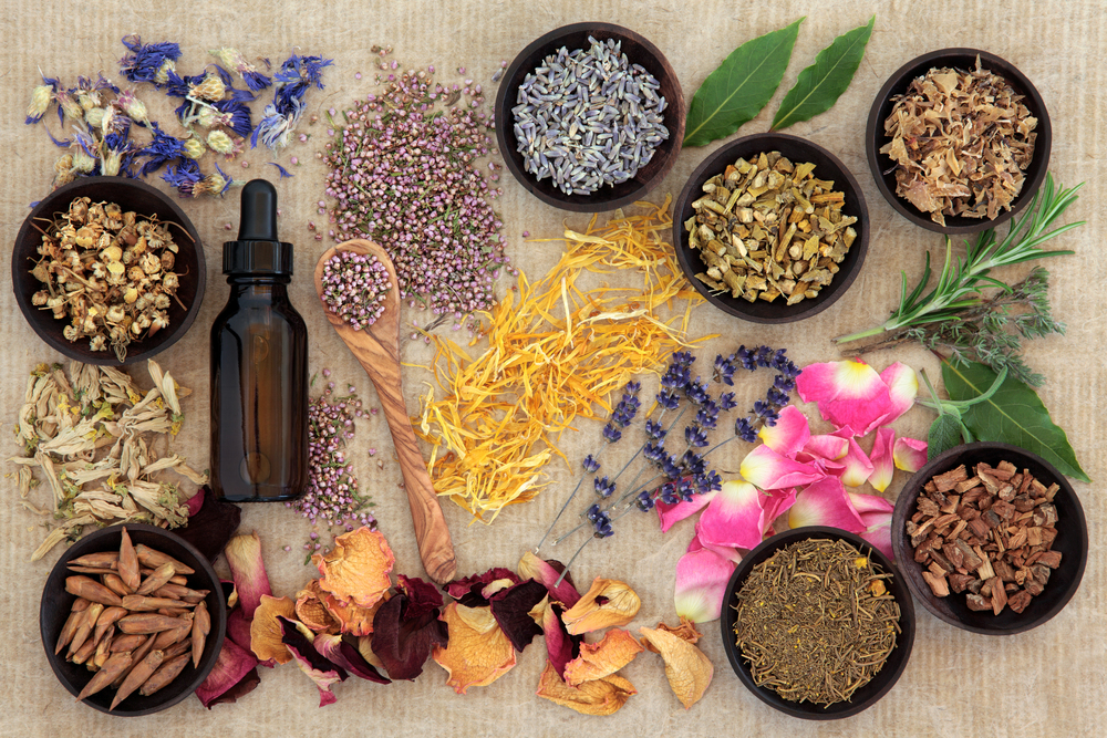 Naturopathy consultation Naturopathic medicine focuses on prevention, treatment, and optimal health through the use of therapeutic methods and natural substances that encourage our inherent self-healing process.  Learn More →