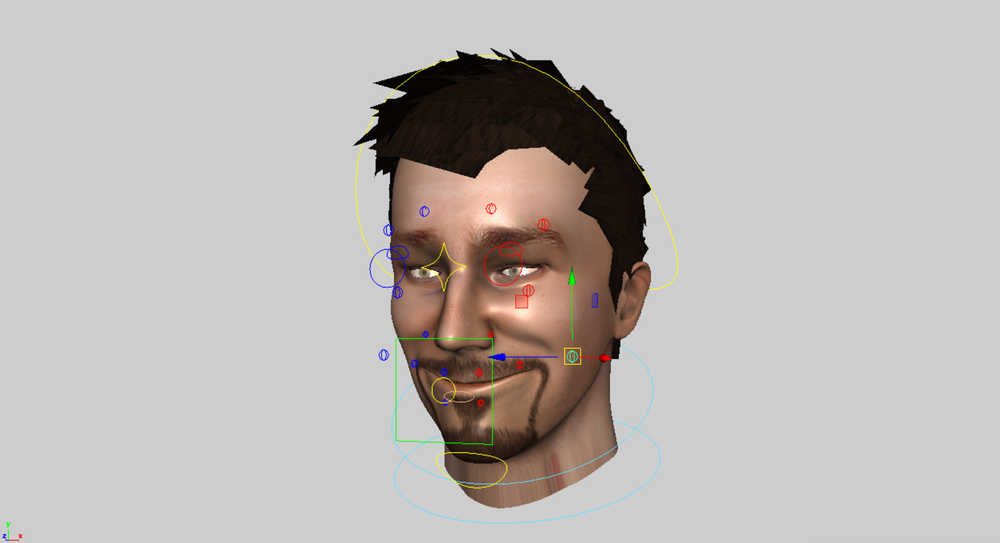face_rig.png