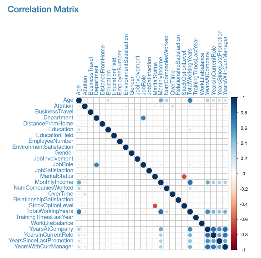 correlation_matrix.png