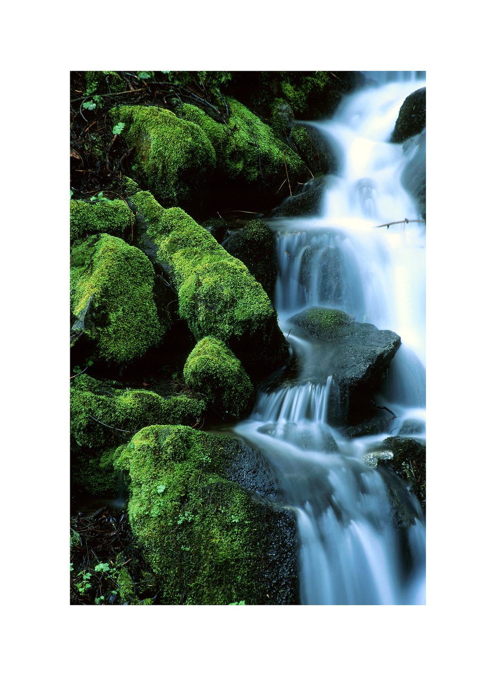 Matusik Travel-Nature 0040
