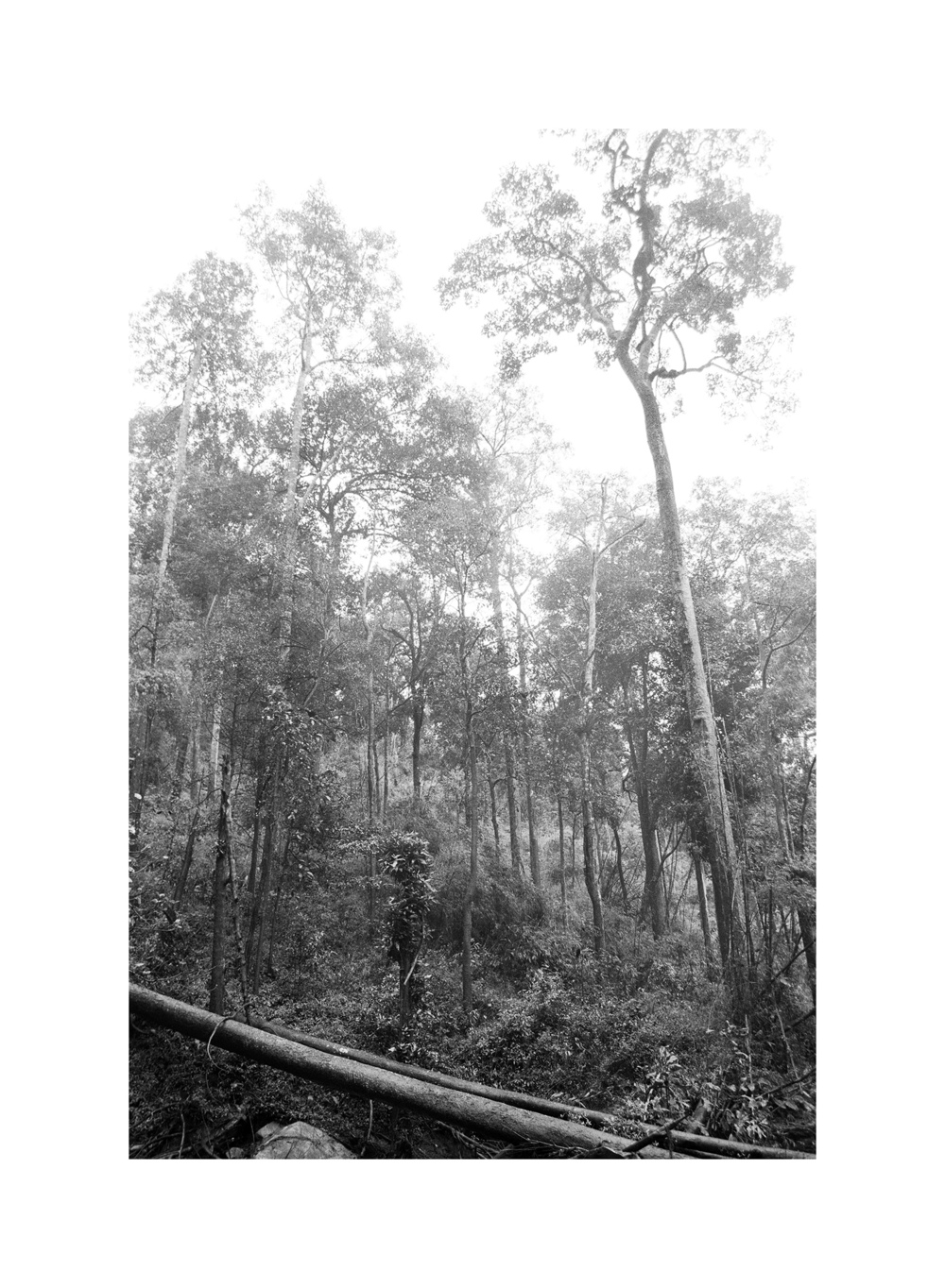 Matusik Travel-Nature 0031