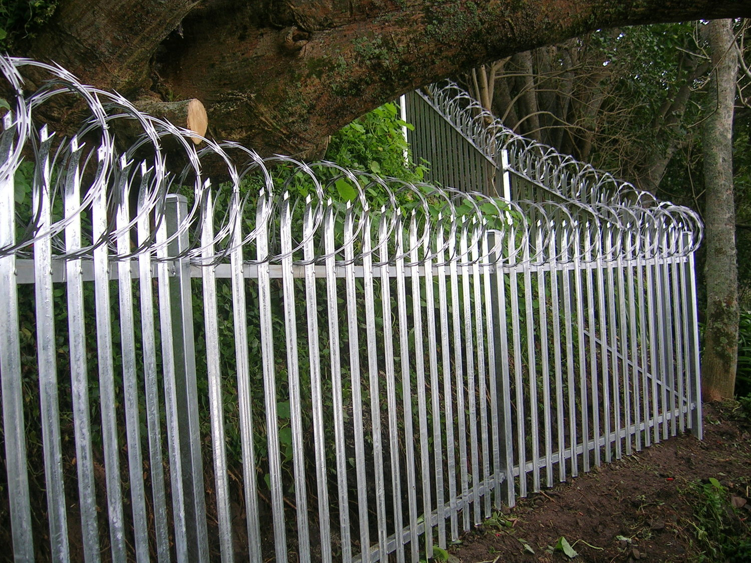 ArmourBarb Razor Wire Tape — Hampden Fence
