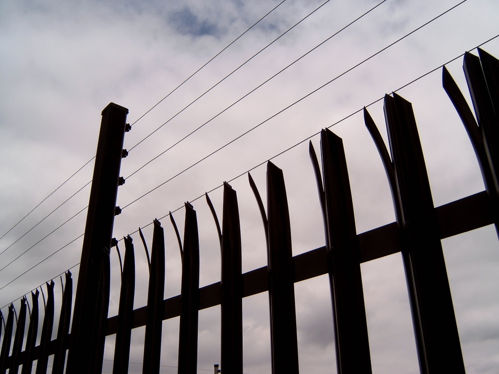 Armourfence with Electric wires2.jpg