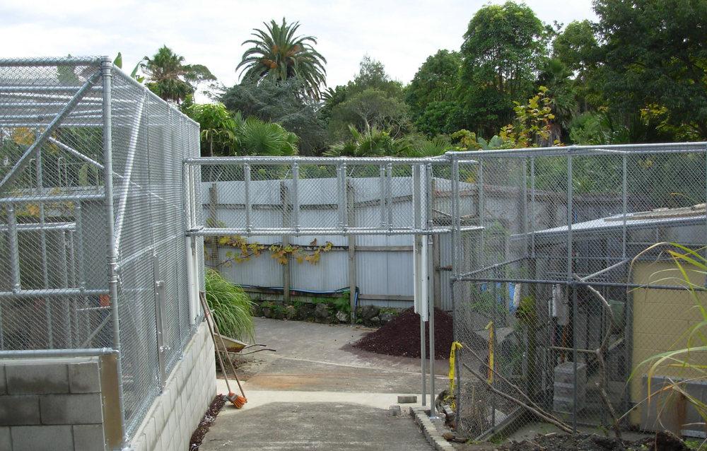 Orangutan Zoo Enclosure 3.jpg