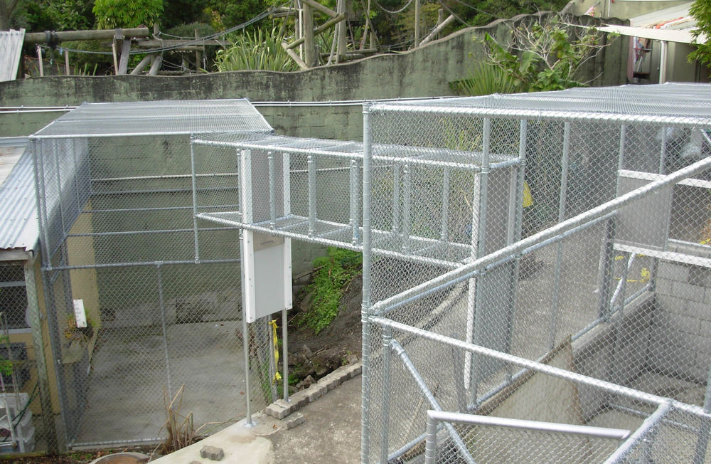 Orangutan Zoo Enclosure 4.jpg