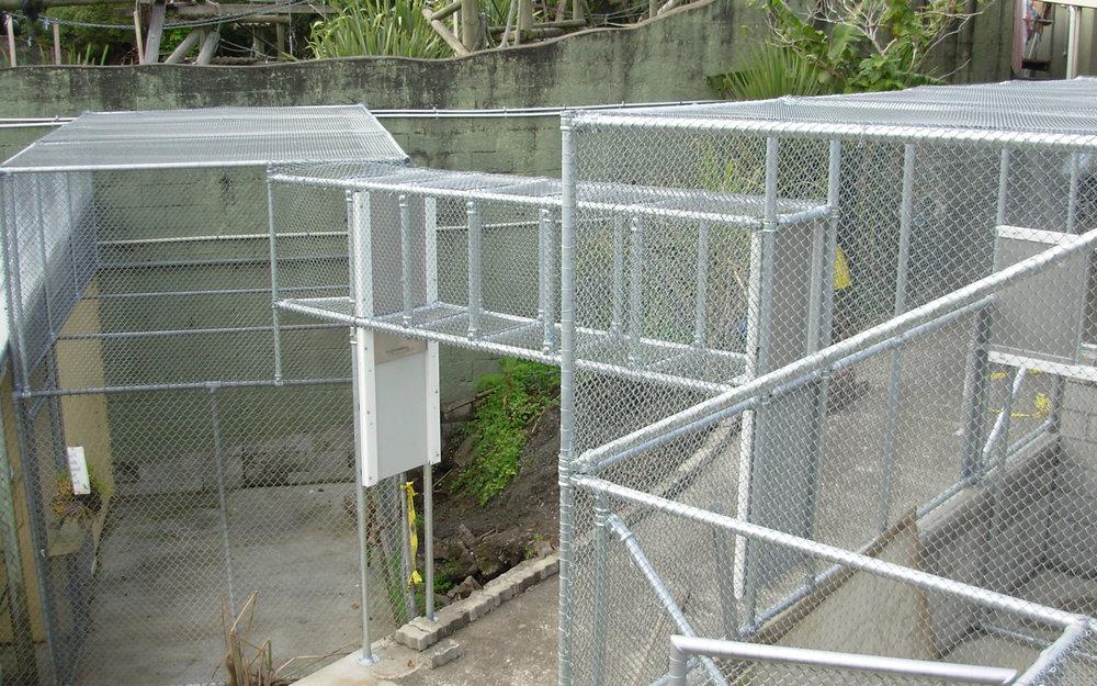 Auckland Zoo Orangutan Enclosure .jpg