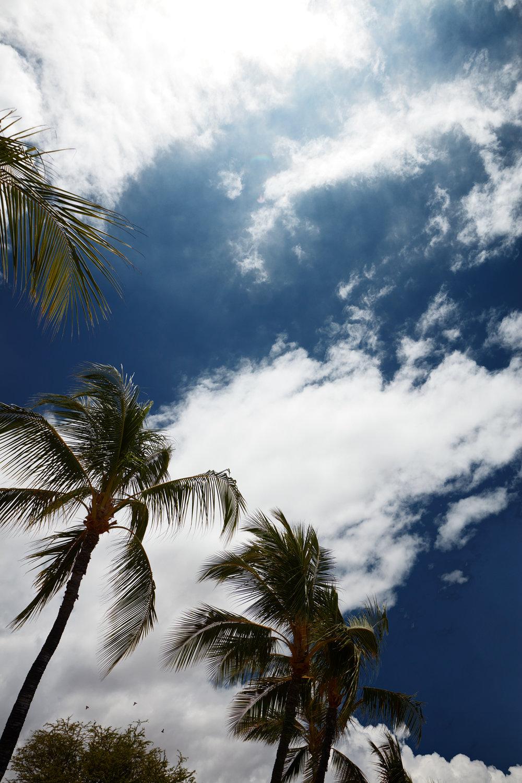 170715_Hawaii_026.jpg