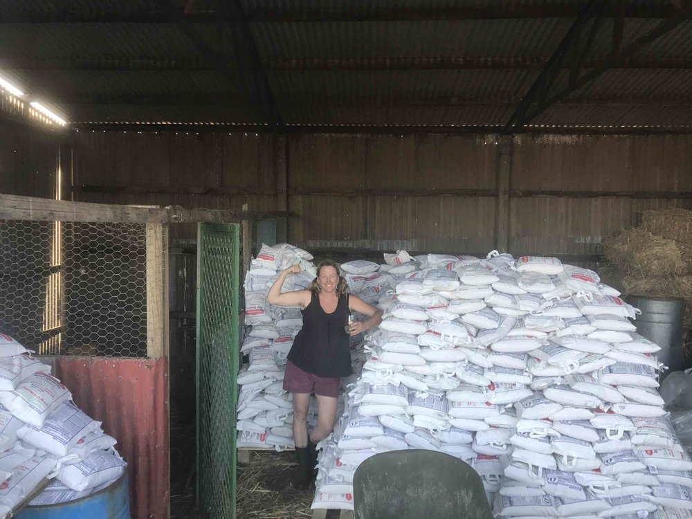 rice haul 2016.jpg