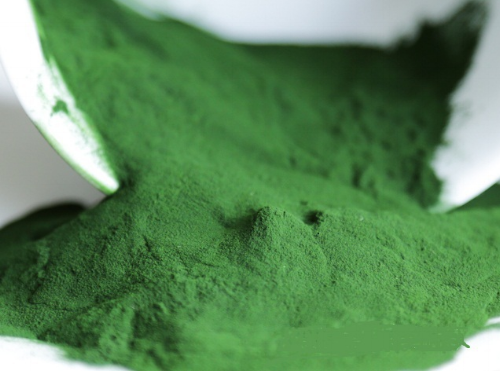 chlorella-for-fat-loss