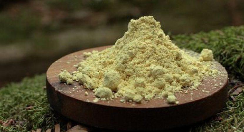 pine-pollen-dosage.jpg