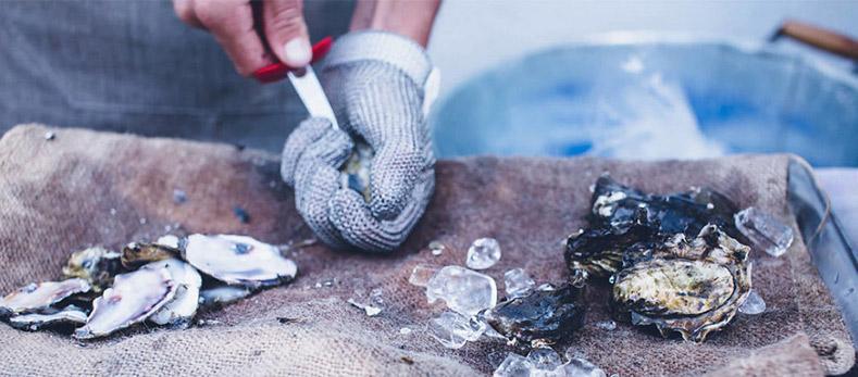 oyster_weareallstardust2.jpg