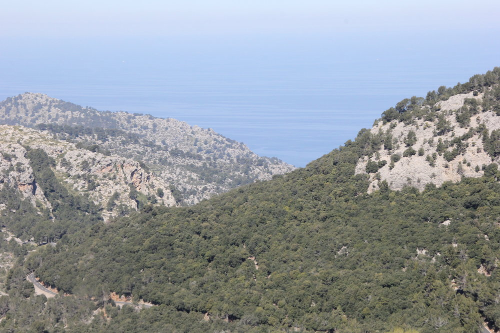The view from Puig Major