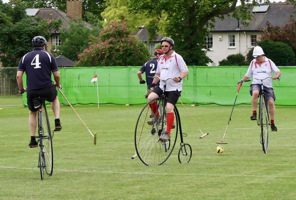 International Penny Farthing Polo: Scotland beat England