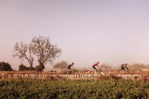 cafe du cycliste mallorca