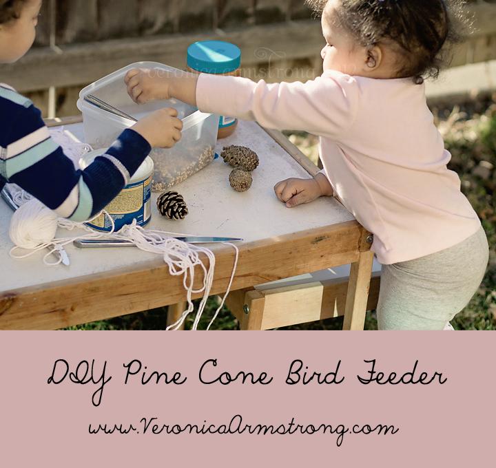 pine-cone-bird-feeder
